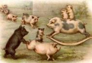 Southland Pork Image